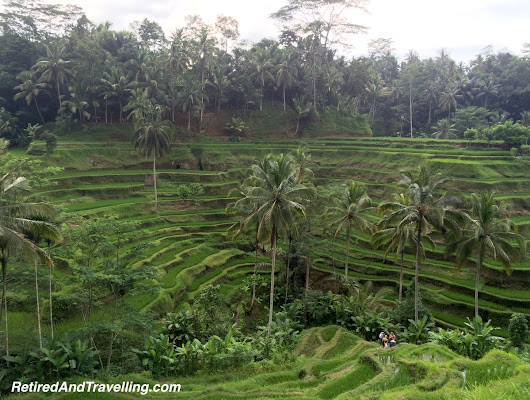 Ubud Treasures - Retired And Travelling