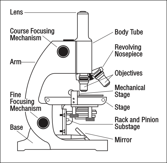 microscope_with_labels