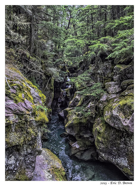 Foto Friday - Avalanche Creek Gorge