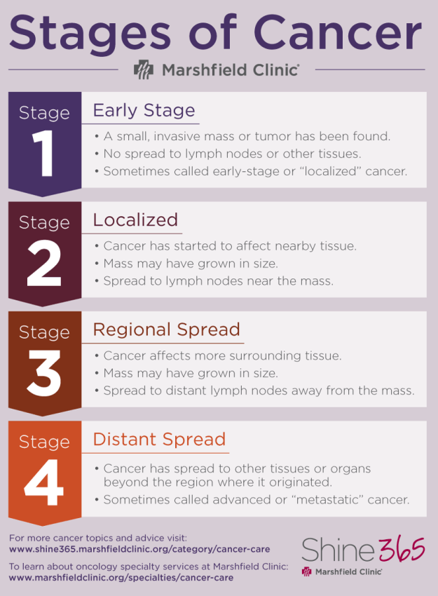 A guide: Cancer stages, terms and side effects | Shine365 ...