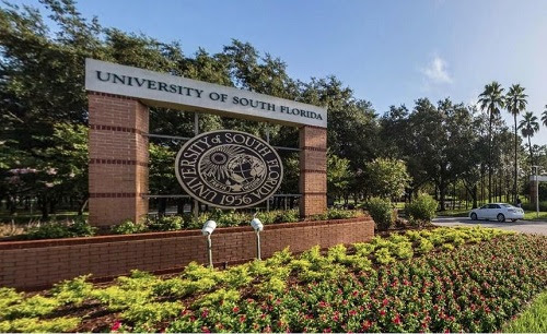 Education Trust Says USF No. 1 Public University for Latino Student Success