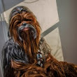 Misguided Musketeer: Chewbacca from Star Wars