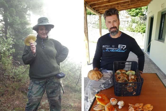 Άρτα: Κυνήγι μανιταριών του δάσους στα Τζουμέρκα – Συλλογή και μαγείρεμα