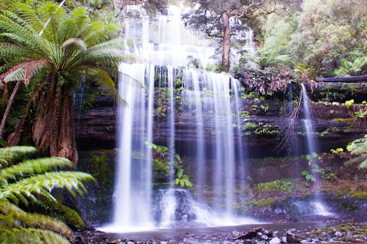 Waterfalls and Wonderment :: Mt Field National Park
