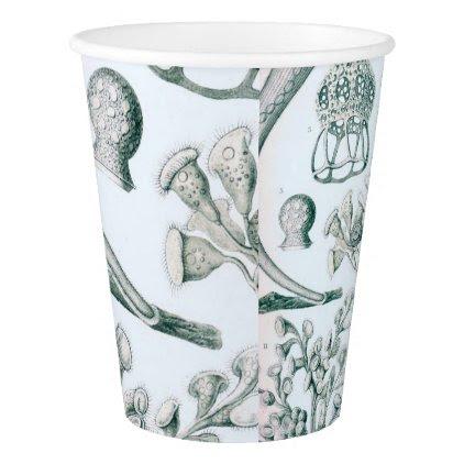Ernst Haeckel Ciliata Paper Cup