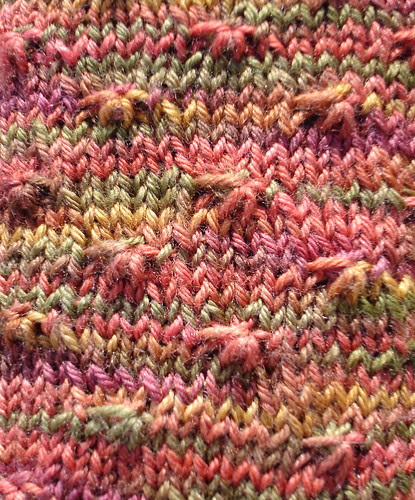 wildflower purl close-up