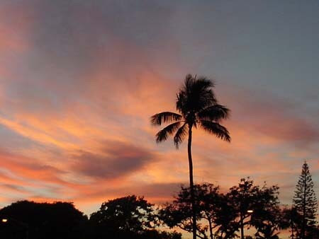 Hawaii_PinkSky_Sunset.jpg