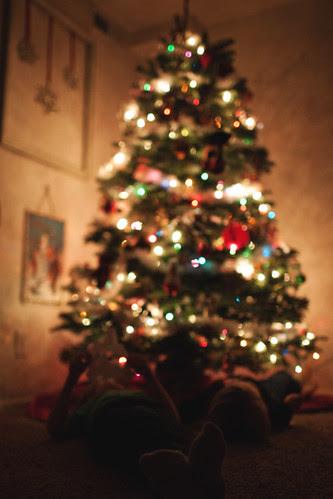 christmashouse1 copy