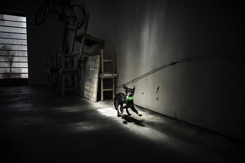 Untitled por Gustavo Minas