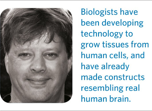 Organoids of intelligence | Nature Physics