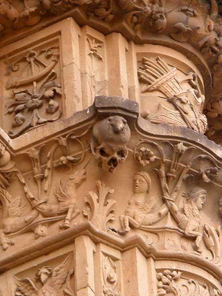 Resultado de imagen de rana en la fachada de la universidad de salamanca