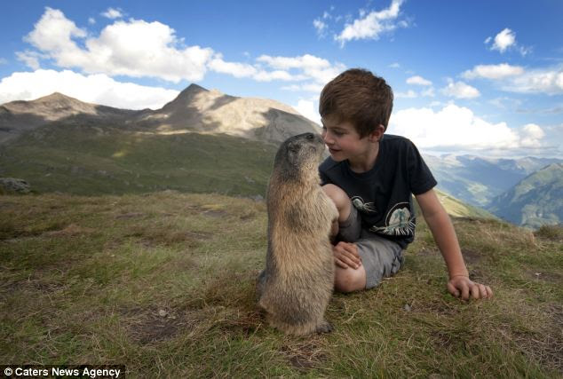 Matteo and his family spend two weeks every year in the Alps visiting his marmot friends