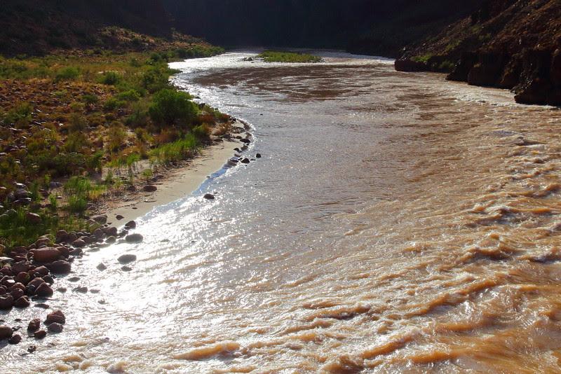 IMG_8425 Colorado River, River Trail Loop, Grand Canyon National Park
