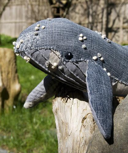 humpback whale no. 10