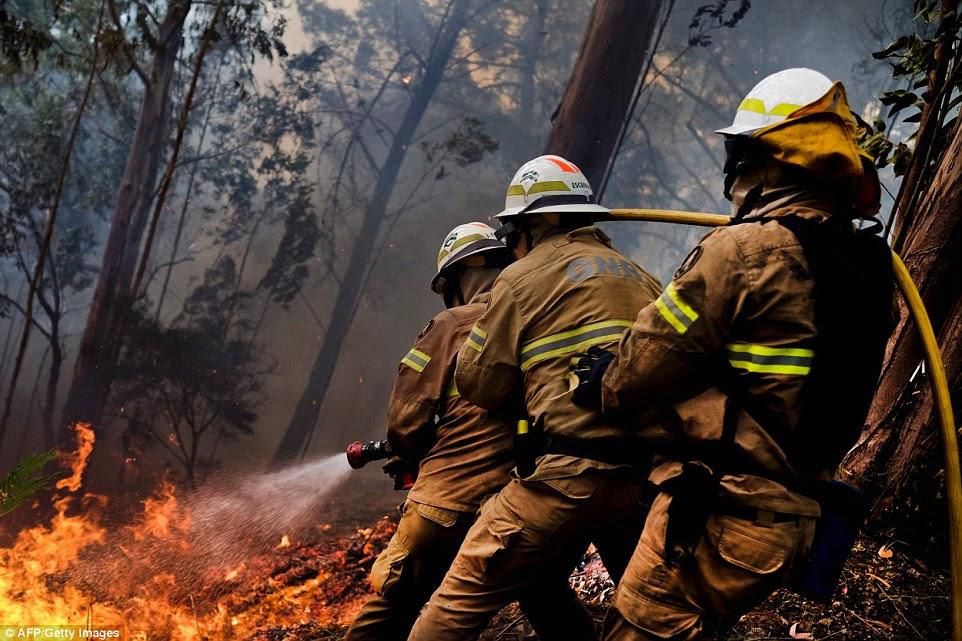 Bombeiros combater um incêndio florestal na Calheta na Madeira.  Futebolista Cristiano Ronaldo, que vem da ilha, elogiou os bombeiros por 'arriscando suas vidas para salvar outras pessoas'