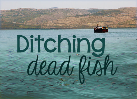 Ditching Dead Fish