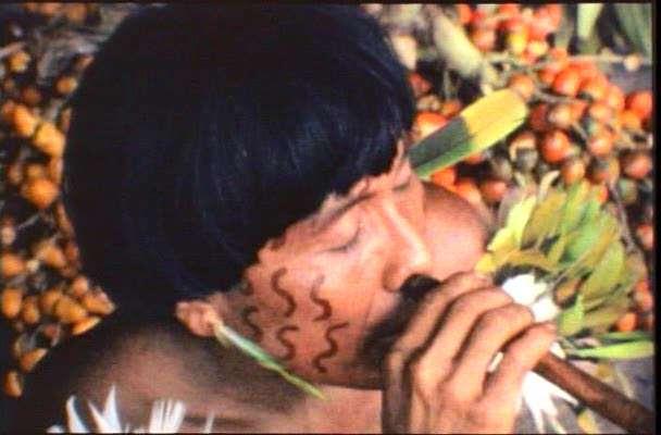 zjhgx Diego Rísquez   Orinoko, nuevo mundo (1984)