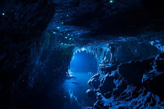 The Glow-Worms of New Zealand's Limestone Caves Revealed in Magical Photo Series - Feature Shoot