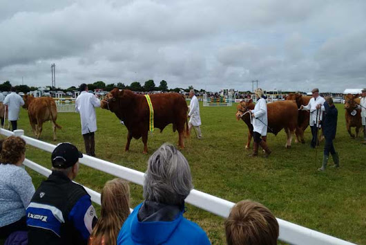 Stithians Agricultural Show | What's On | The Valley