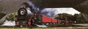 colombia ffcc de caldas ferrocarril cafetero tren