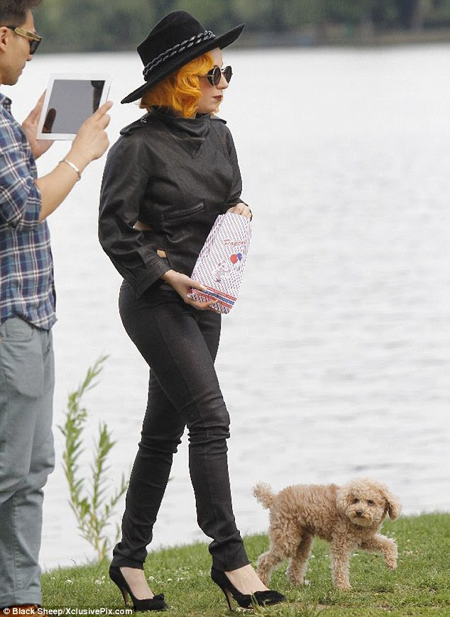 Treat: Gaga snacked on some popcorn while Fozzi eagerly waited for his owner to share