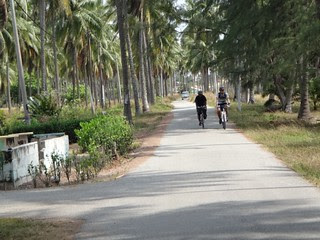 ZenDogs Desaru Adventure (112km, 29-30 March 2013) - 156
