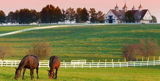 Carol Finds Her Old Kentucky Home
