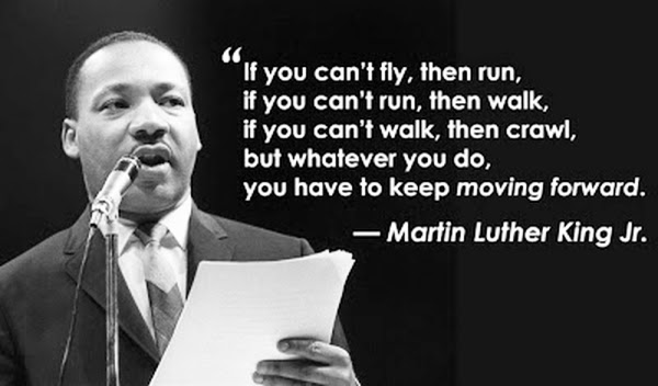 If You Cant Fly Then Run If You Cant Run Then Walk If You Can