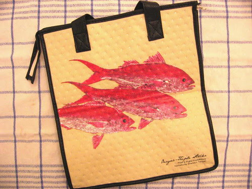 Insulated fish bag