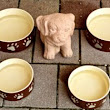 Different Types of Dog Bowls and Where to Get Them - Alicia's Online