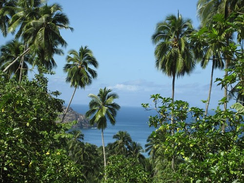 This feels tropical! Nuku Hiva