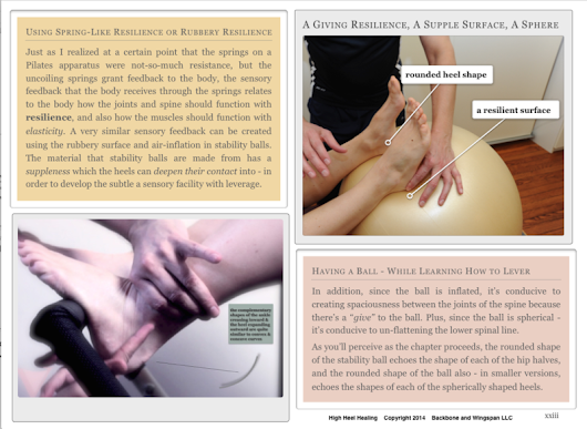 Reviewing the E-Book High Heel Healing: Using the Feet & Legs Efficiently for Improving Posture, Exercise & Sports Specific to Hip Support & Hip Pain Relief - Heel & Sole for Foot Pain