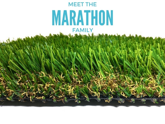 Cool Running – Meet the Marathon Family! | Purchase Green
