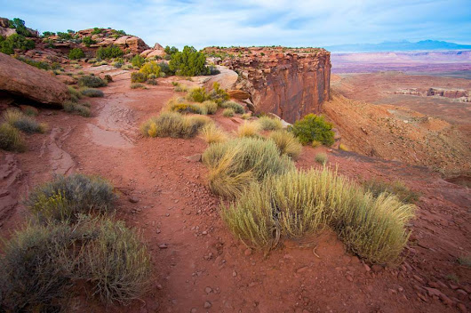 Hiking Grand View Point Trail at Canyonlands National Park – Camera and a Canvas