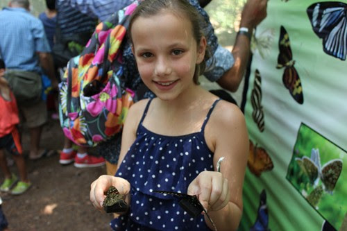 Champion Newspaper | DeKalb's most-trusted news source » Butterfly festival returns to Dunwoody