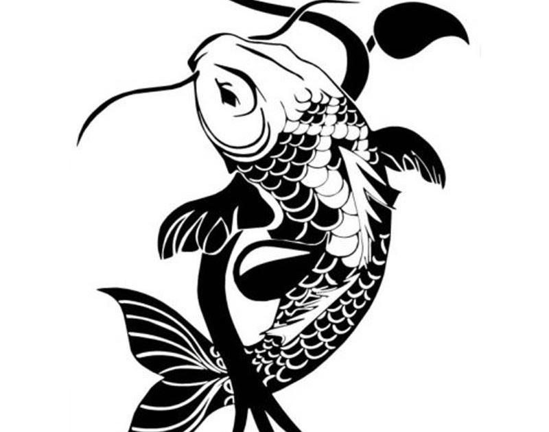 Paling Keren 25 Tato Ikan Koi Hitam Putih Contoh Gambar Tato