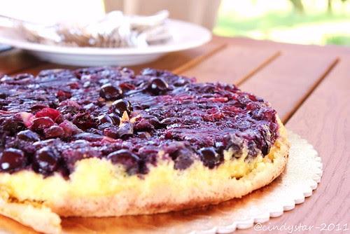 schiacciata uva fragola-whb305