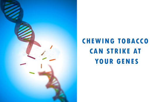 GENETIC EFFECT OF CHEWING TOBACCO | Tobacco
