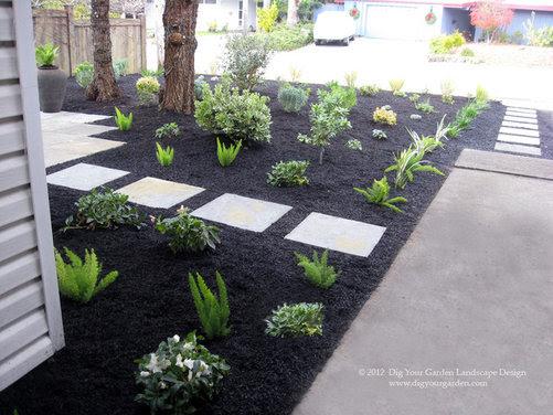 Mid-century Front Garden Transformation in Northern California - Houzz