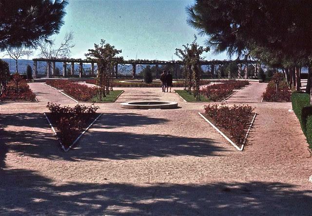 Rosaleda del Parque de la Vega en Toledo hacia 1967. Fotografía de John Fyfe