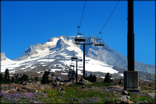 Mt Hood from the Timberline Trail / PCT