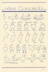 les animaux 11
