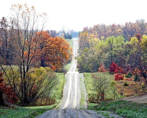 Beautiful Missouri Fall Color