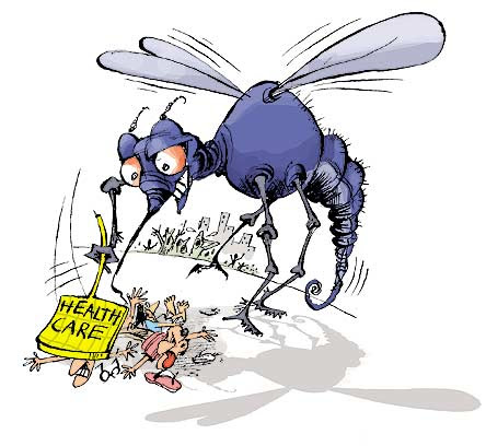 dengue_mosquito-health-care
