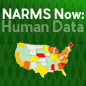 Narms Now Logo