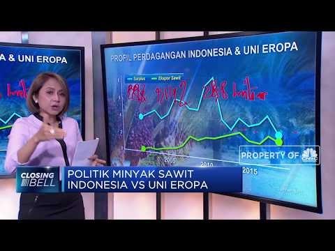 Politik Minyak Sawit, Indonesia VS Uni Eropa