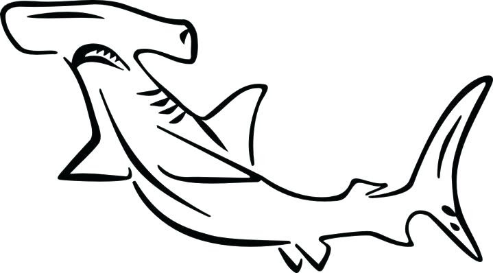 Hammerhead Shark Coloring Page at GetColorings.com   Free ...