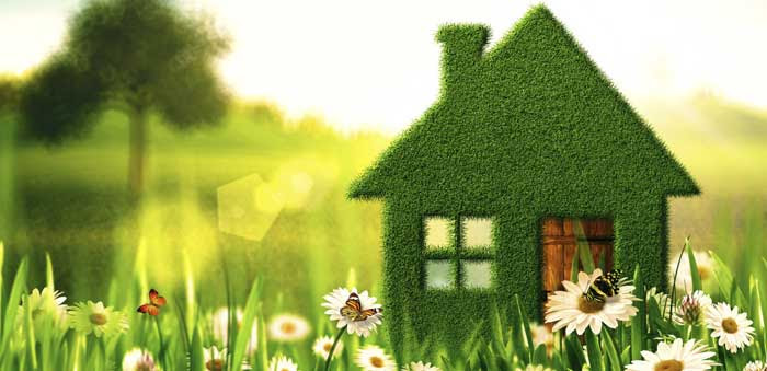 What Is A Healthy House Petrole Page