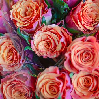 Mark Knox Flowers Your Odessa Florist