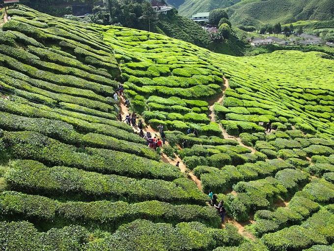 Percutian Di Hujung Jari Bersama Traveloka App